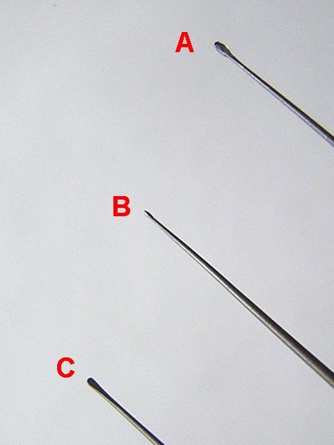 Bild in Originalgröße ansehen
